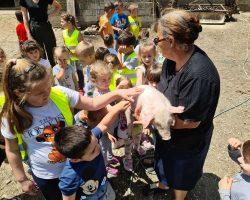 Poseta seoskom domacinstvu Brzohode (3)