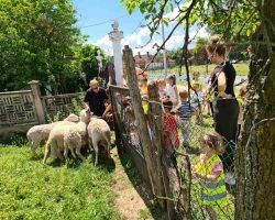 Poseta seoskom domacinstvu Brzohode (7)