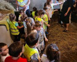 Poseta seoskom domacinstvu Brzohode (8)